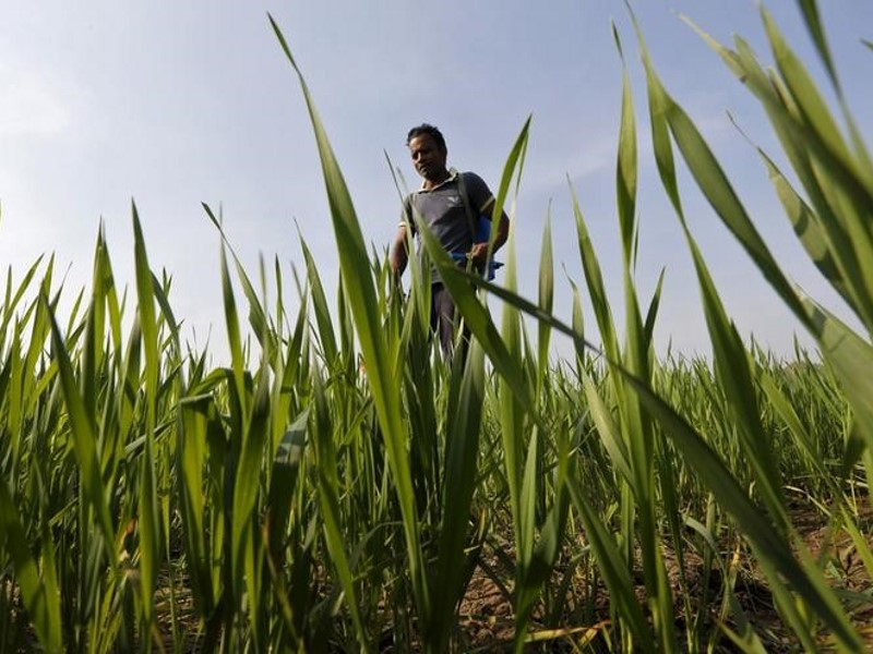 Digital Agriculture Market Platform to Launch in April, Says PM Modi